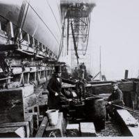 Hollingworth Collection E/24/n